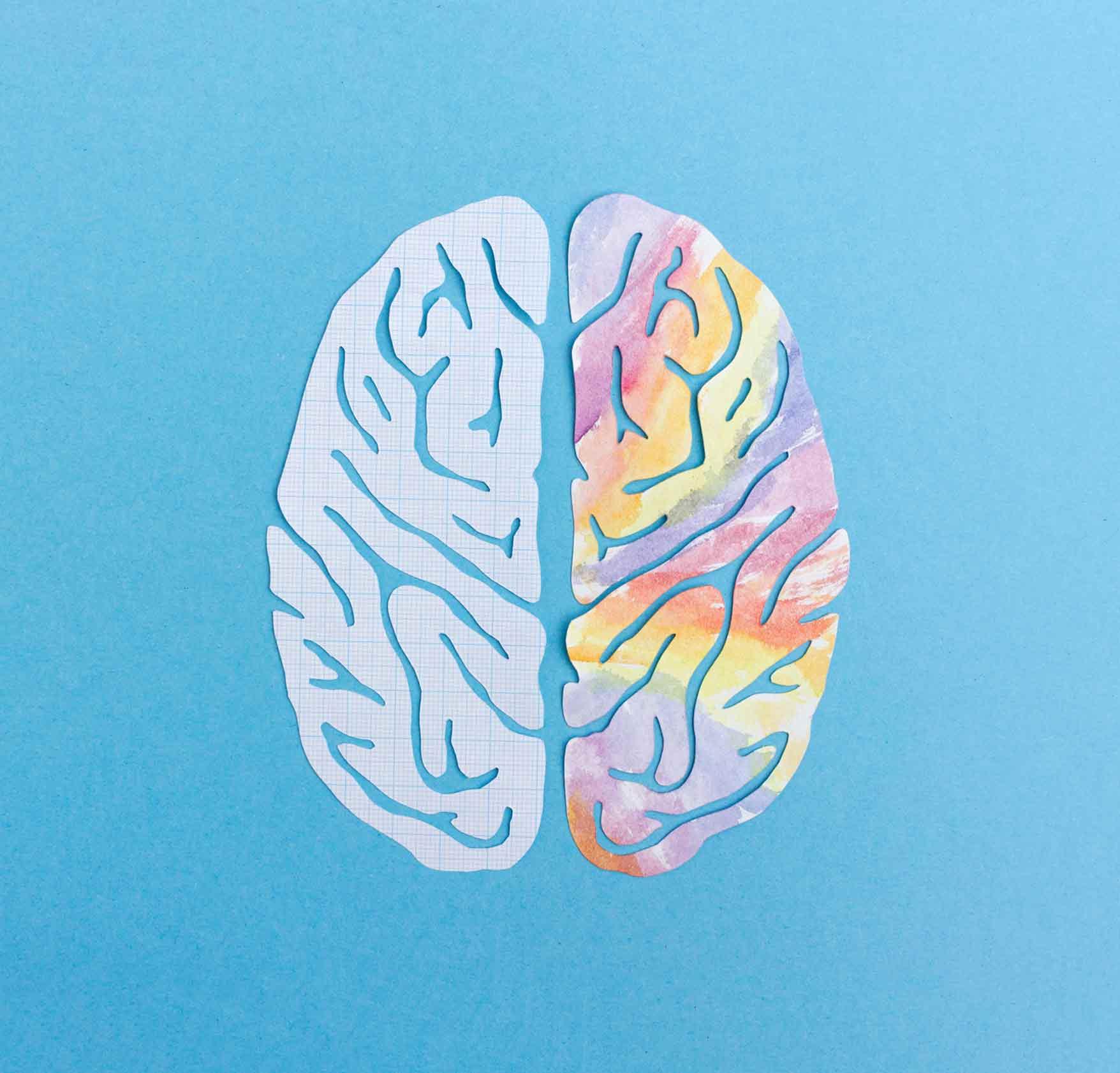 Mente blanda versus mente sólida
